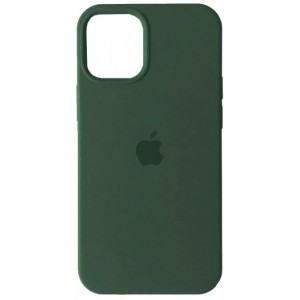 Silicone Case Full for iPhone 12 Pro Max (58) pine green