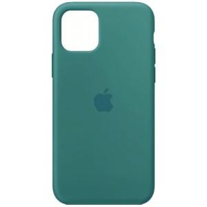 Silicone case for iPhone 11 (61) cactus