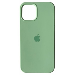 Silicone case for iPhone 11 Pro (68) fresh green